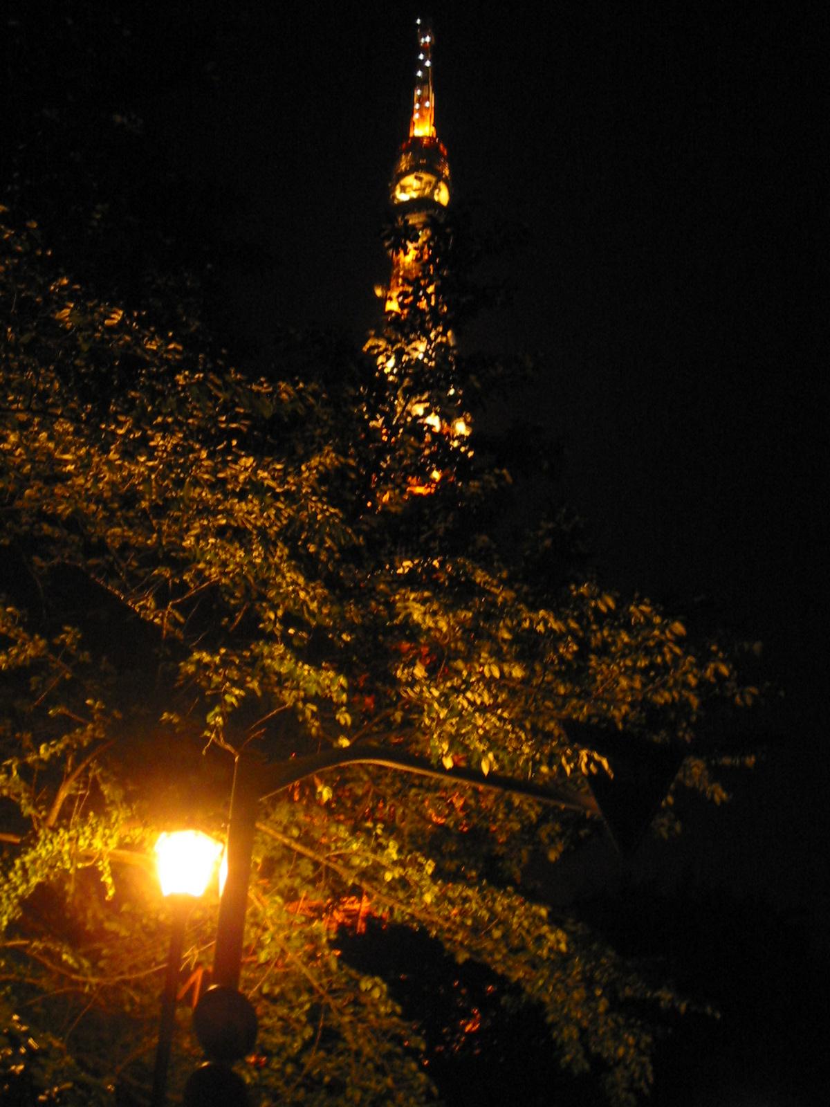 Tokyo - Tower 004